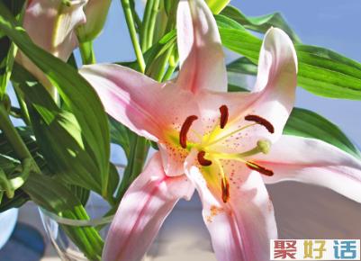 适合复活节送的祝福语 2020复活节经典祝福合集2