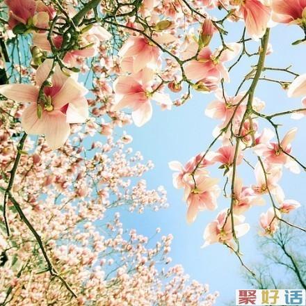 微信爱情说说 你的幸福,不在别人眼里,而在自己心里