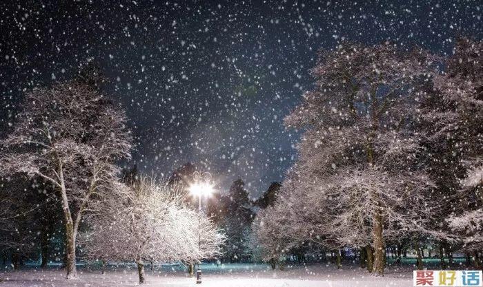 下雪天文案大全分享: 霜雪吹满头 也算共白首!插图(1)