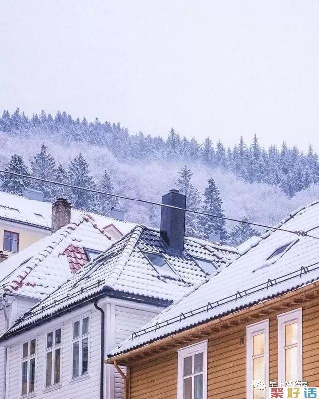 下雪了的说说心情短语,很喜欢下雪天的文案, 发朋友圈:大雪飘飘,情意脉脉,祝福悄悄。插图(8)