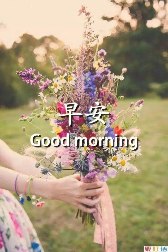双十一问候大家早上好的文案 早上好动态表情包插图(8)