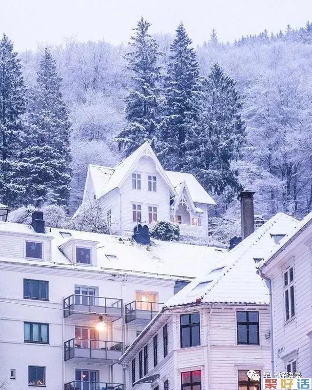 下雪了的说说心情短语,很喜欢下雪天的文案, 发朋友圈:大雪飘飘,情意脉脉,祝福悄悄。插图(5)