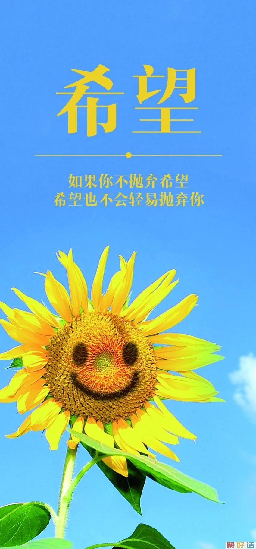 清晨正能量暖心的励志句子,简单干净,激励你奋斗插图5