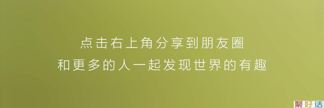 除夕文案:灯前小草写桃符插图2