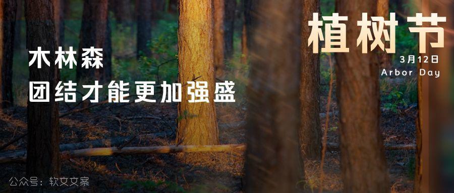 植树节文案、植树节海报宣传标语设计欣赏: 植树节, 你想栽在我心上?插图18