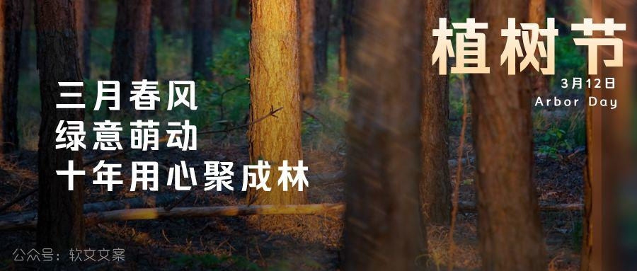 植树节文案、植树节海报宣传标语设计欣赏: 植树节, 你想栽在我心上?插图