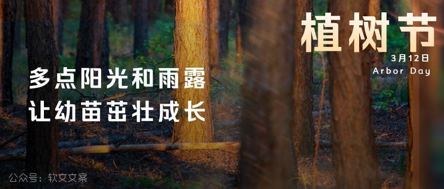 植树节文案、植树节海报宣传标语设计欣赏: 植树节, 你想栽在我心上?插图3
