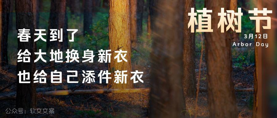 植树节文案、植树节海报宣传标语设计欣赏: 植树节, 你想栽在我心上?插图15