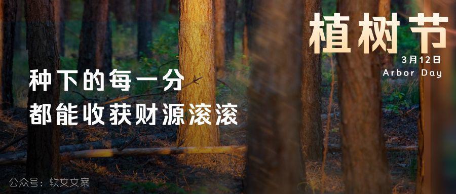 植树节文案、植树节海报宣传标语设计欣赏: 植树节, 你想栽在我心上?插图7