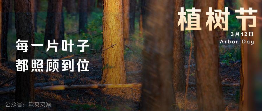 植树节文案、植树节海报宣传标语设计欣赏: 植树节, 你想栽在我心上?插图13
