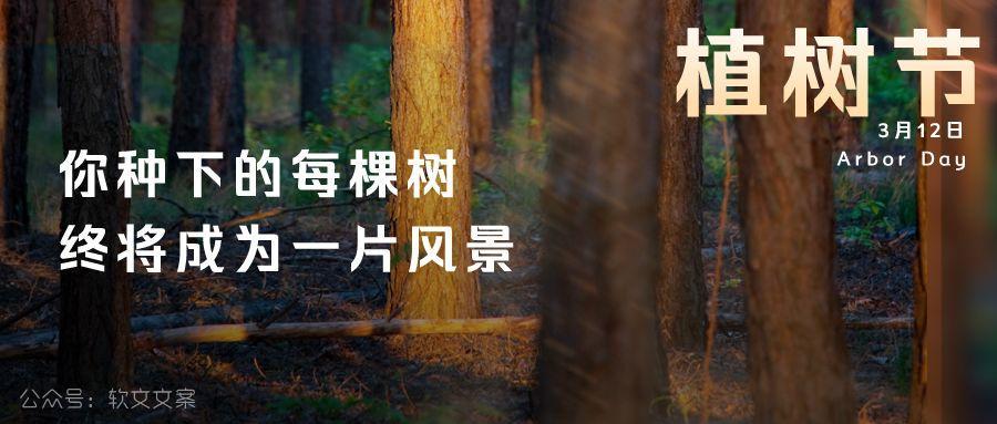 植树节文案、植树节海报宣传标语设计欣赏: 植树节, 你想栽在我心上?插图14