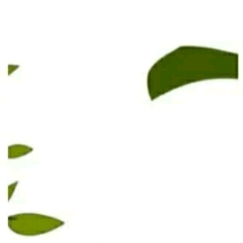 朋友圈配图: 3.12植树节文案+12组九宫格插图24