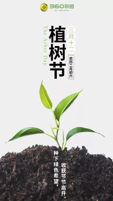 植树节文案、植树节海报宣传标语设计欣赏: 植树节, 你想栽在我心上?插图40
