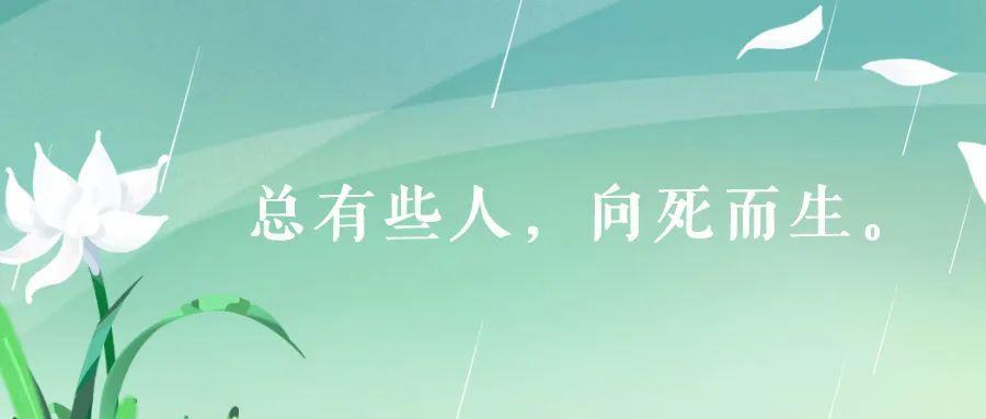 致敬,追思,前行清明节文案: 春风落日万人思插图2