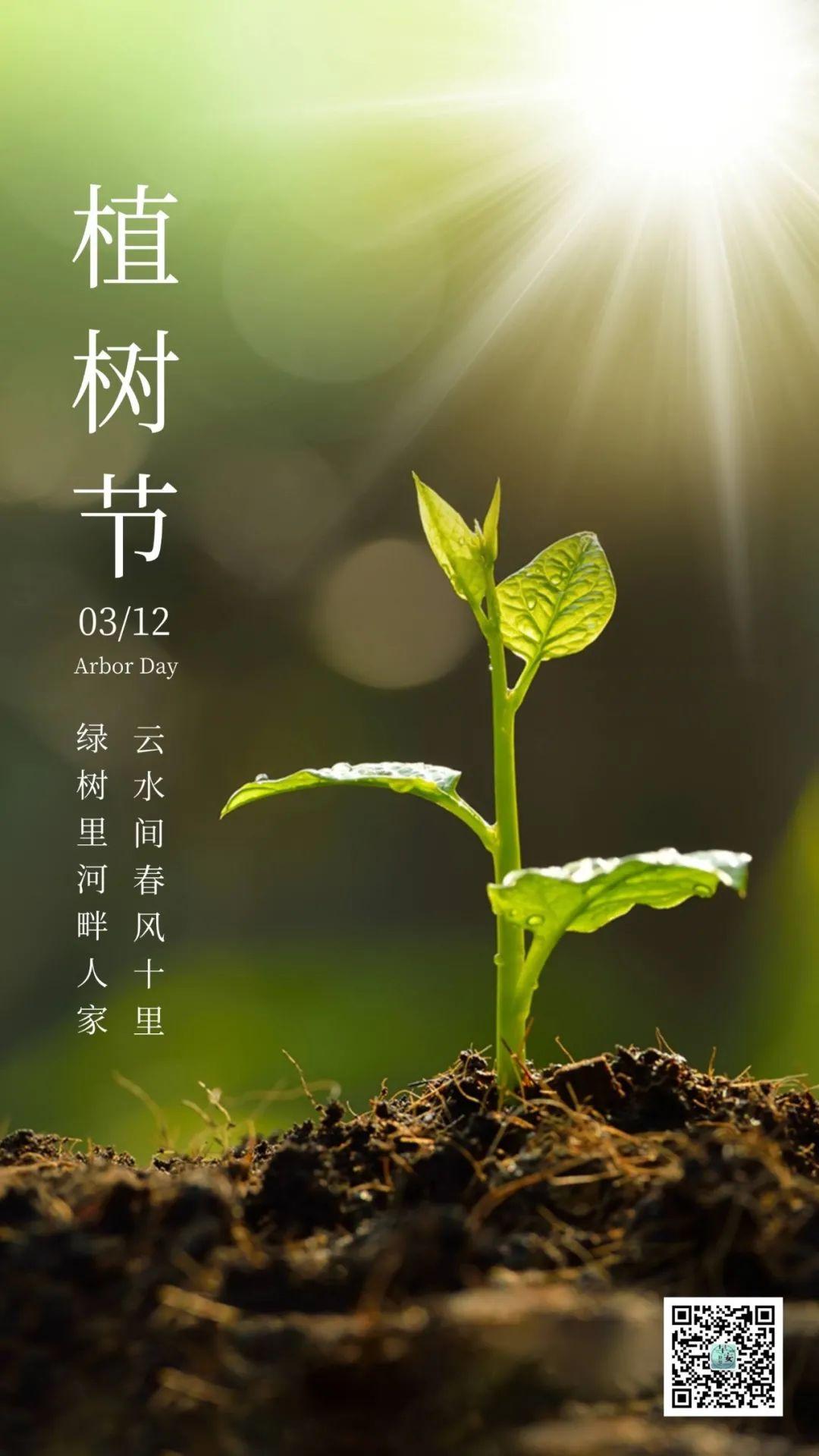 3月12日朋友圈植树节文案:大手拉小手,同栽一片绿!插图4