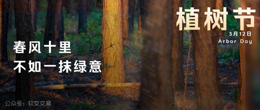 植树节文案、植树节海报宣传标语设计欣赏: 植树节, 你想栽在我心上?插图4