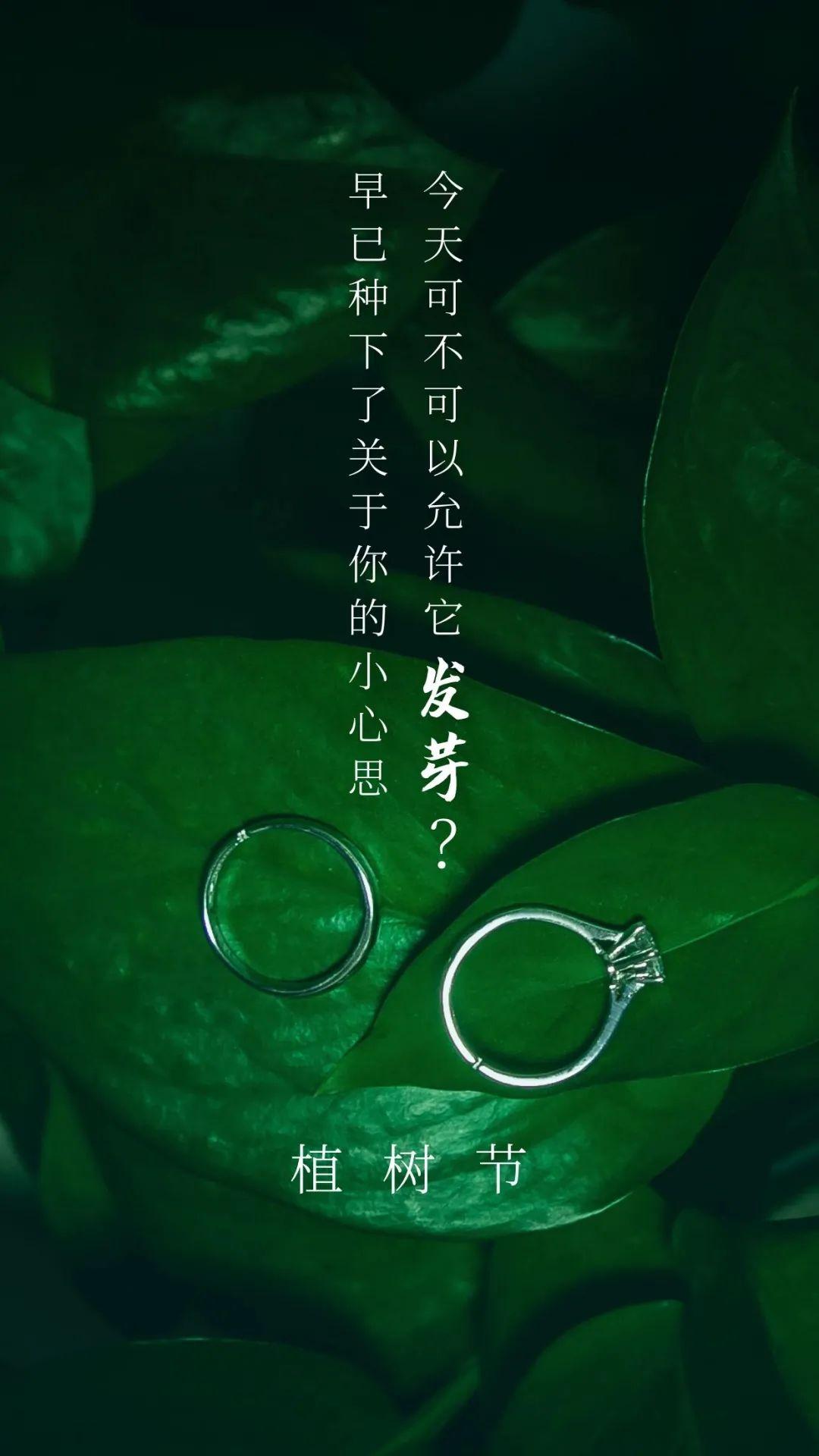 植树节文案、植树节海报宣传标语设计欣赏: 植树节, 你想栽在我心上?插图54