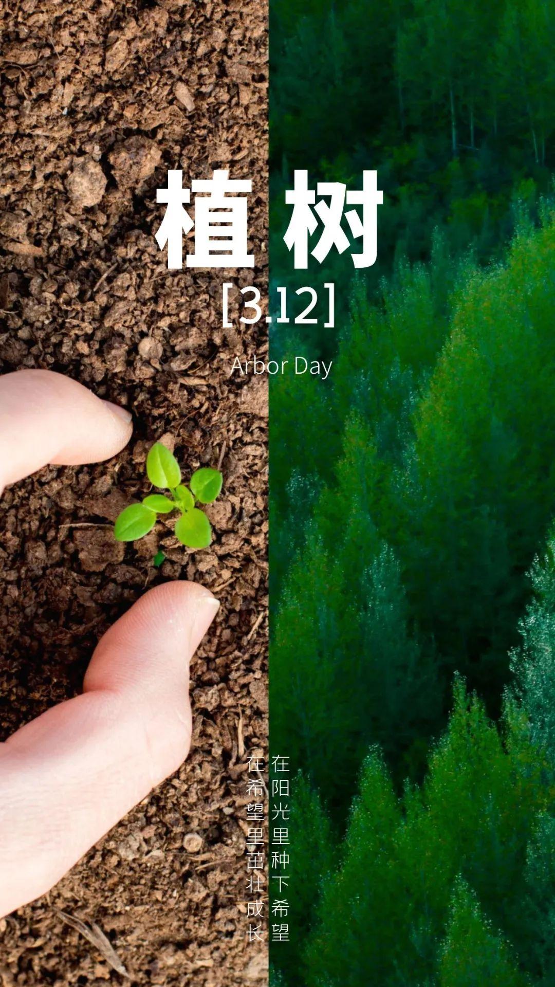 植树节文案、植树节海报宣传标语设计欣赏: 植树节, 你想栽在我心上?插图56