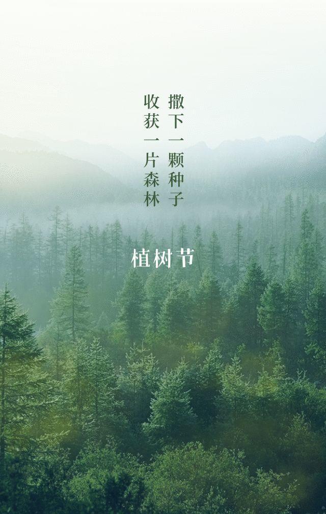 植树节文案、植树节海报宣传标语设计欣赏: 植树节, 你想栽在我心上?插图45