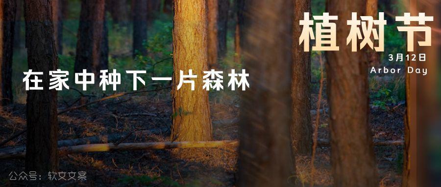 植树节文案、植树节海报宣传标语设计欣赏: 植树节, 你想栽在我心上?插图12