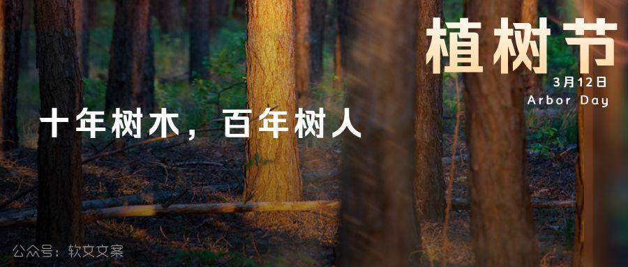 植树节文案、植树节海报宣传标语设计欣赏: 植树节, 你想栽在我心上?插图2