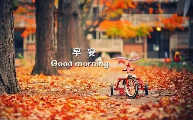 微信朋友圈早安最优美的文案: 你笑一次,我就可以高兴好几天!插图5