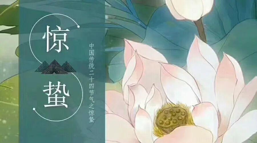 惊蛰   精选朋友圈节日文案插图7