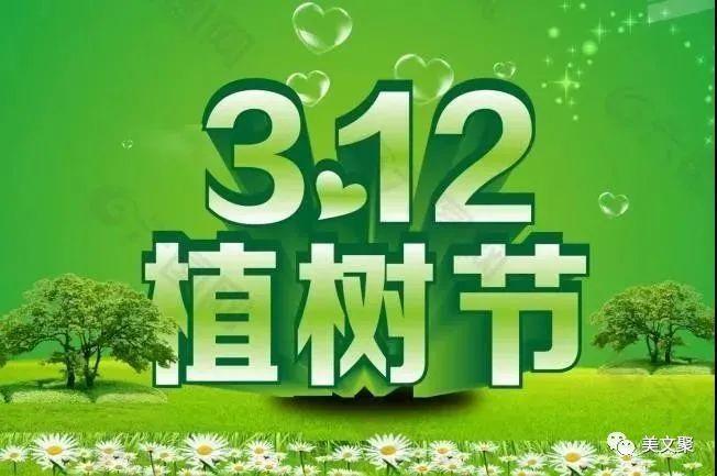 植树节优美文案:植树节,别忘给你的发财树浇水哦!插图2
