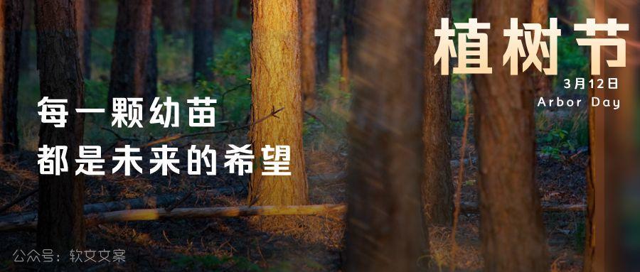 植树节文案、植树节海报宣传标语设计欣赏: 植树节, 你想栽在我心上?插图6