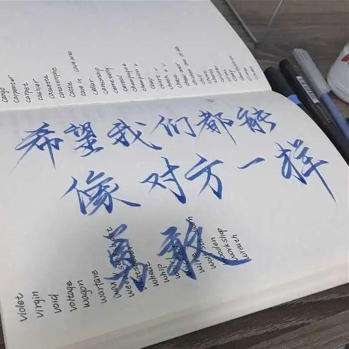 QQ说说上常用的温柔干净的文案:恭喜你熬过一天,并且恭喜你再来一天插图4