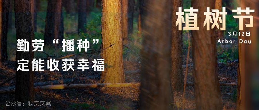 植树节文案、植树节海报宣传标语设计欣赏: 植树节, 你想栽在我心上?插图10