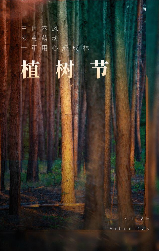 植树节文案、植树节海报宣传标语设计欣赏: 植树节, 你想栽在我心上?插图59