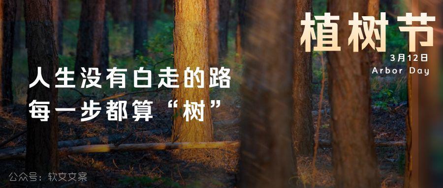 植树节文案、植树节海报宣传标语设计欣赏: 植树节, 你想栽在我心上?插图9