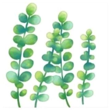 朋友圈配图: 3.12植树节文案+12组九宫格插图50
