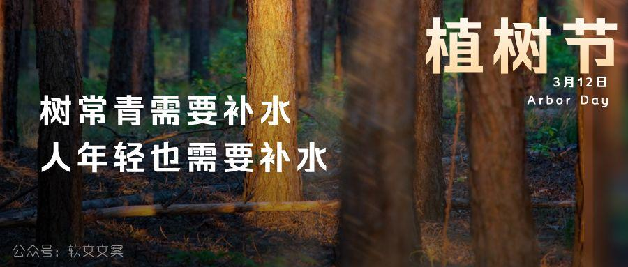植树节文案、植树节海报宣传标语设计欣赏: 植树节, 你想栽在我心上?插图8