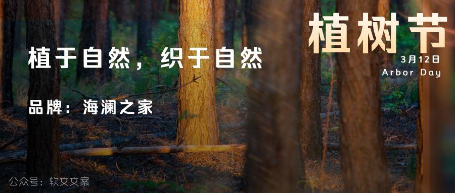 植树节文案、植树节海报宣传标语设计欣赏: 植树节, 你想栽在我心上?插图17