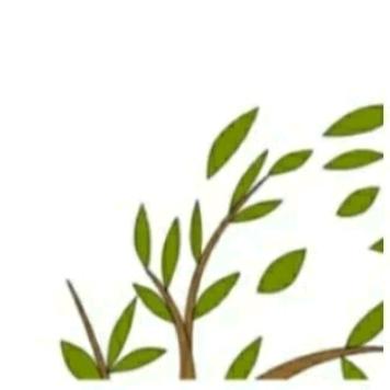 朋友圈配图: 3.12植树节文案+12组九宫格插图23