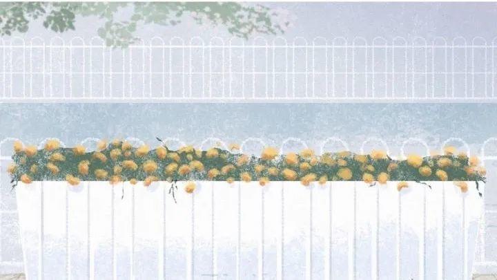 30句温柔的文案长篇配图:春风十里,原来是你!插图7