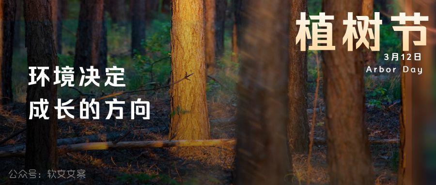 植树节文案、植树节海报宣传标语设计欣赏: 植树节, 你想栽在我心上?插图11