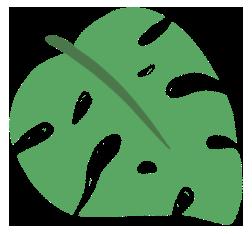 文案分享    关于春天的句子 3.0插图