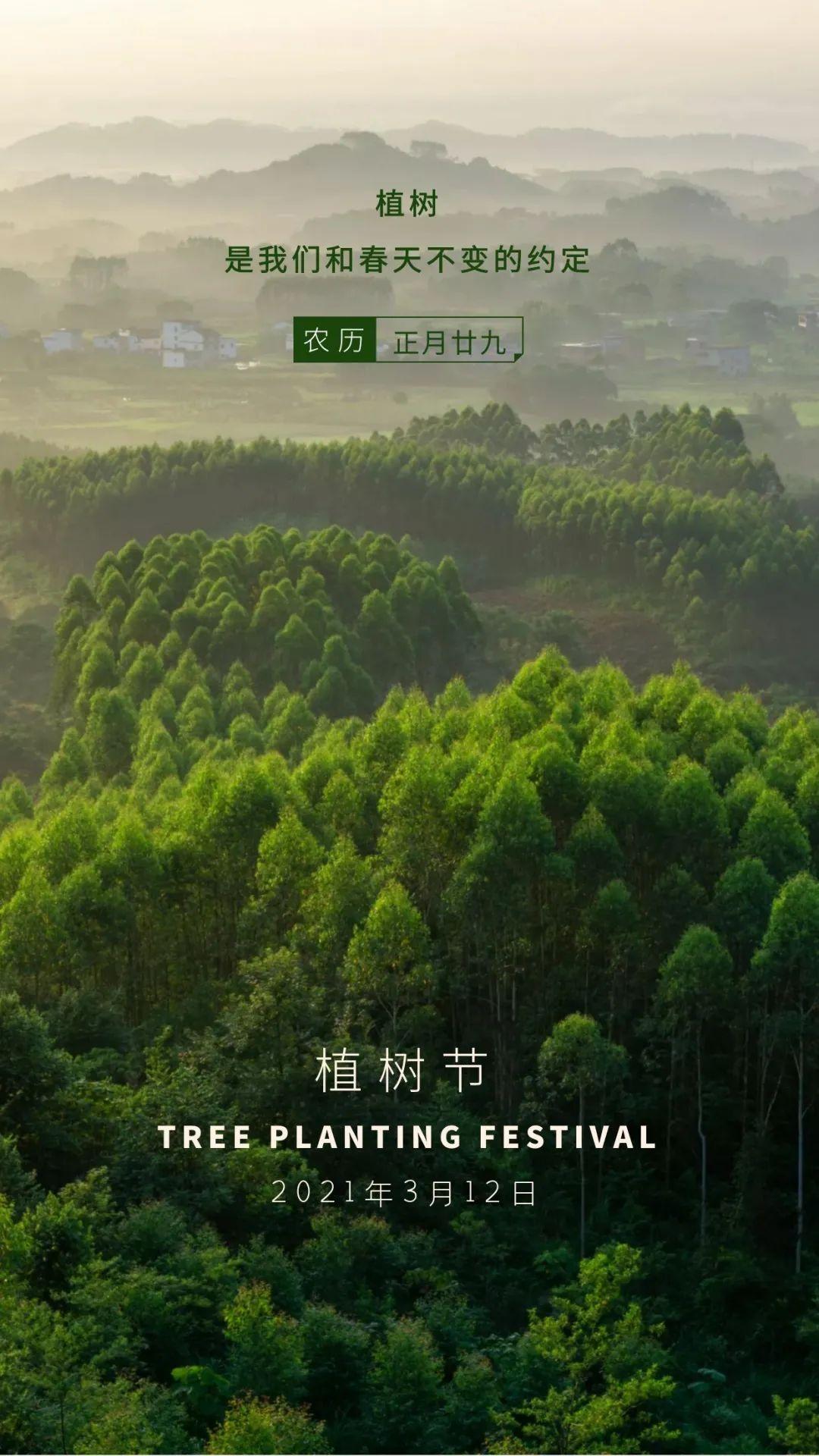 植树节文案、植树节海报宣传标语设计欣赏: 植树节, 你想栽在我心上?插图55