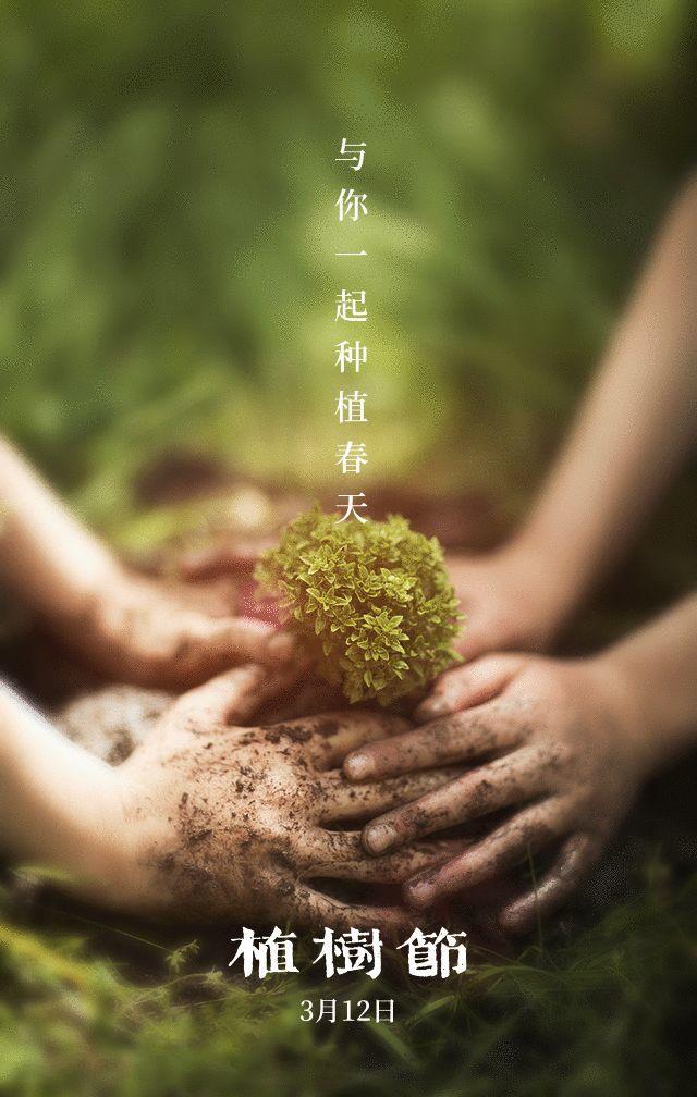 植树节文案、植树节海报宣传标语设计欣赏: 植树节, 你想栽在我心上?插图50