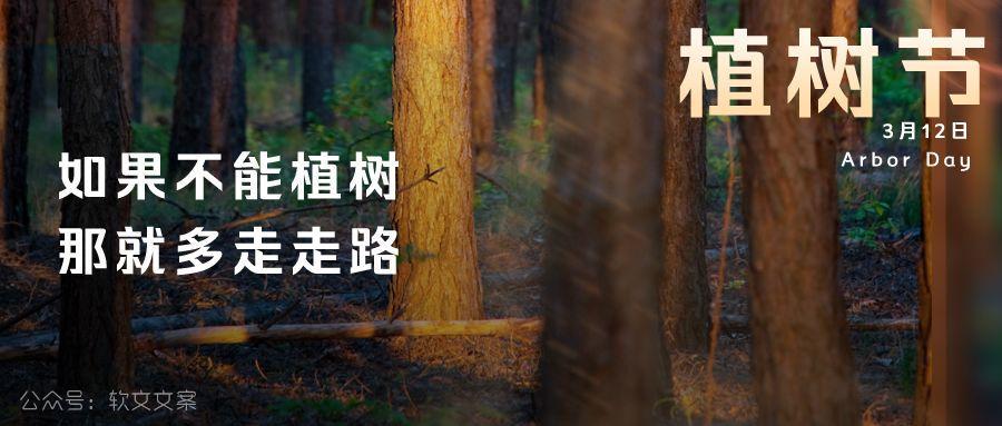 植树节文案、植树节海报宣传标语设计欣赏: 植树节, 你想栽在我心上?插图5