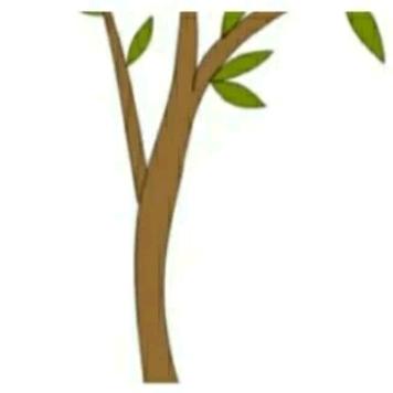 朋友圈配图: 3.12植树节文案+12组九宫格插图26