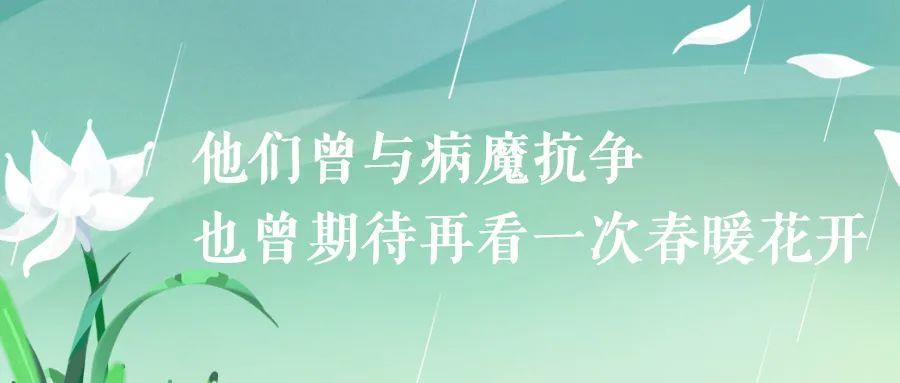 致敬,追思,前行清明节文案: 春风落日万人思插图6