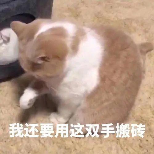 """什么梗?""""累丑""""突上热搜!网友忍不住了…插图5"""