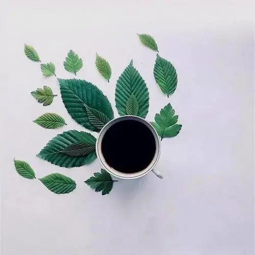 简短暖心的早安文案: 建议每天早上看一遍元气满满!插图