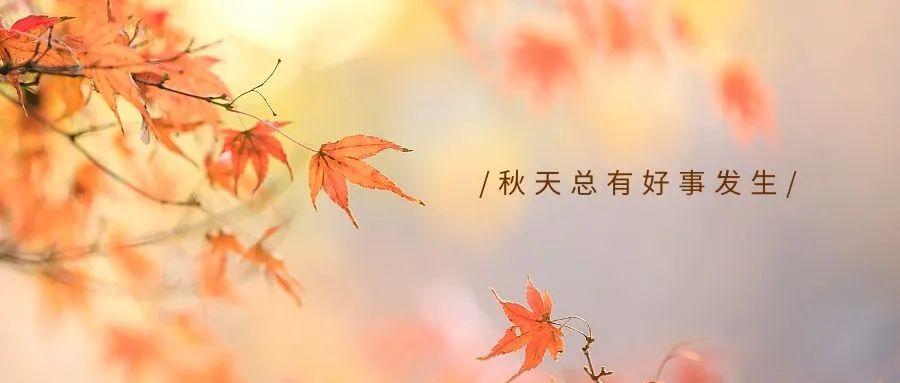 夏天结束秋天开始的文案插图1