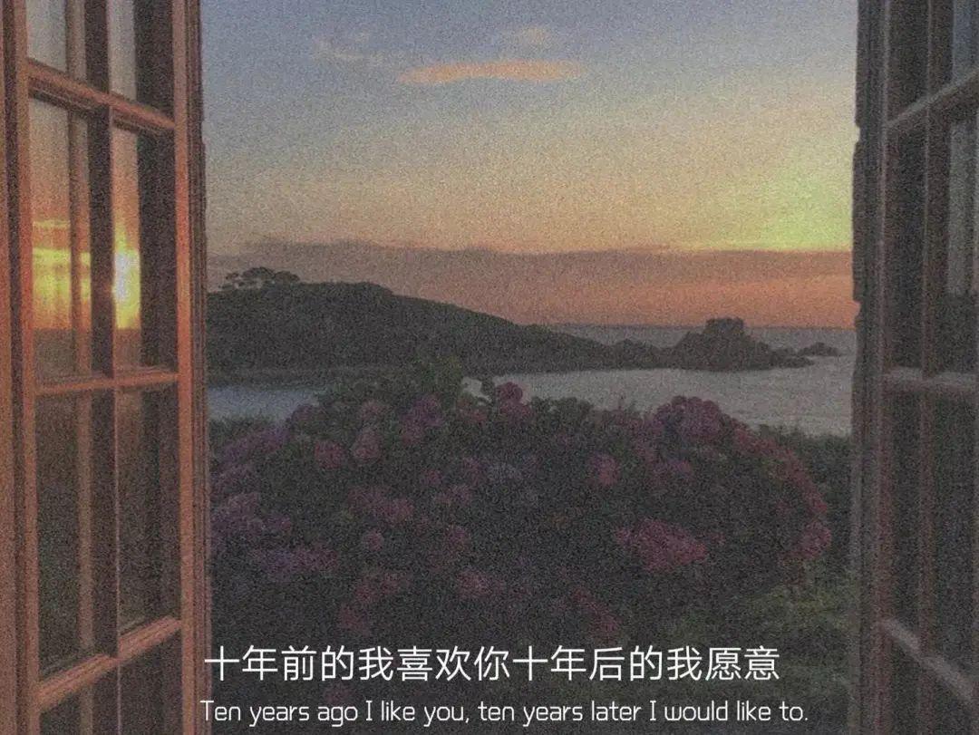 九个句子,别慌,月亮也正在大海某处迷茫插图7
